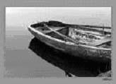 Ruderboot.jpg
